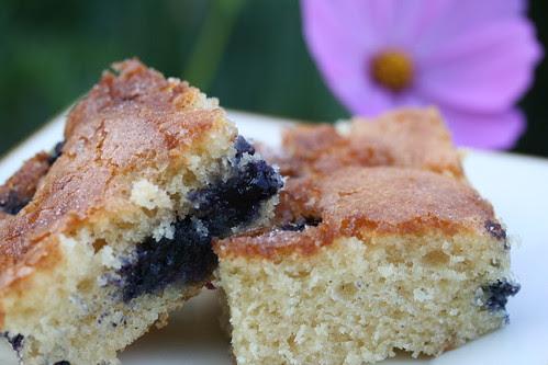 Blueberry Boy Bait (America's Test Kitchen)