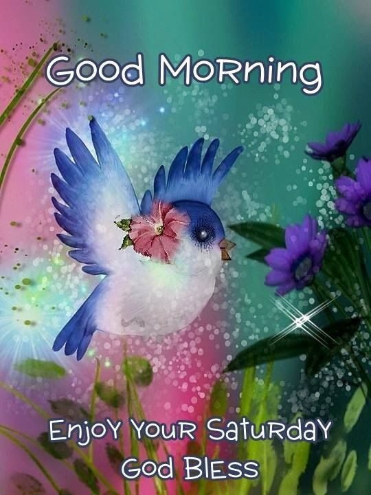 Good Morning Enjoy Your Saturday Pictures Photos And Images For