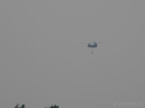 DSCN2661 Chinook