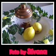 banner per Silvana