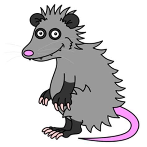 Cartoon Possum Step by Step Drawing Lesson