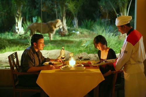酷吧!用餐食可以看到戶外的老虎