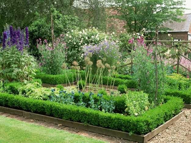 Flower Idea Backyard Garden