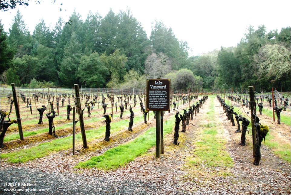 http://mcnees.org/winesite/napa/napa-2011/diamond-creek/img_napa-11_diamond_creek_lake_vineyard_remc.jpg
