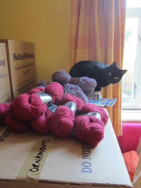 yarn guarding (1)