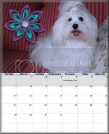 sidebar photo blog-calendar-july2013-sidebar_zps37acc1b1.jpg