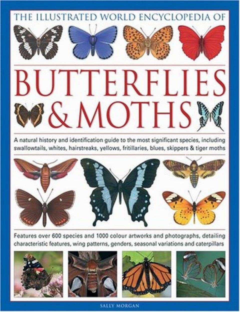 The Illustrated World Encyclopaedia Of Butterflies And
