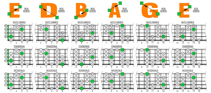 5 String Bass Strings Notes