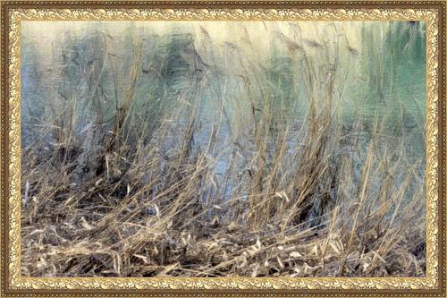 riberas del río Tajo