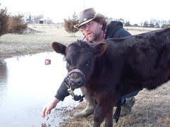 You can led a calf to water. . .