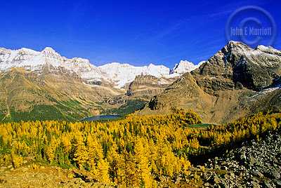 Image result for canadian rockies in revelstoke