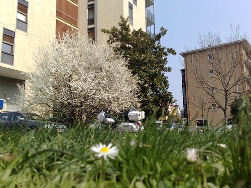Cassano sa di primavera by durishti