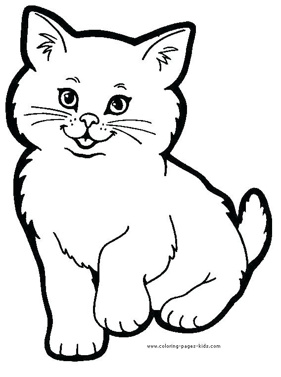 Animal Colouring Pages Printable - Coloring And Drawing