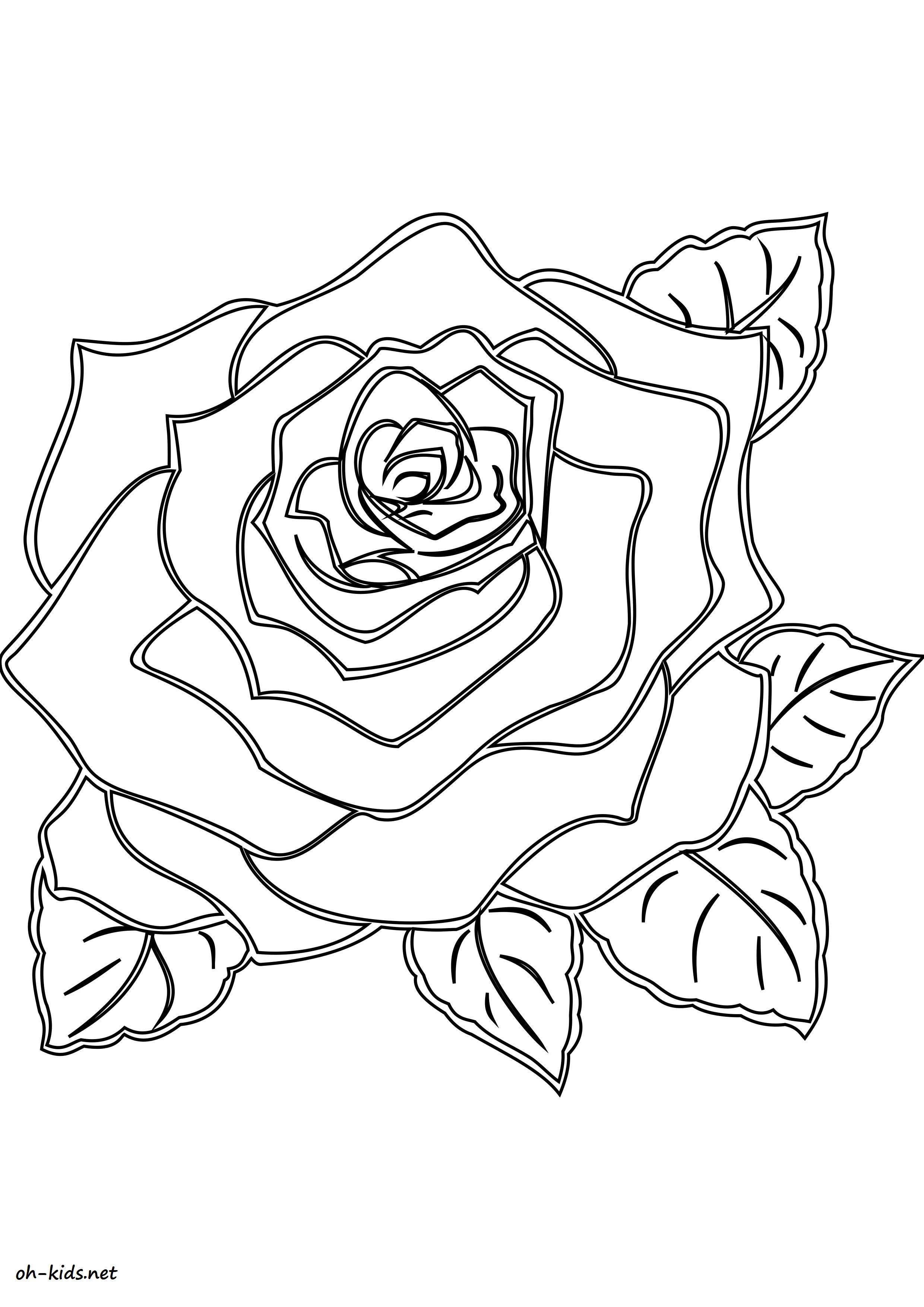 Unique coloriage a imprimer de rose haut coloriage hd - Rose coloriage ...