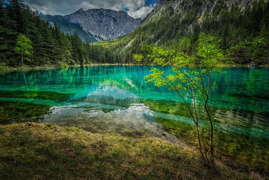 cool-Green-sea-lake-forest-water