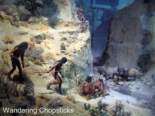 13 Chapin Mesa Archeological Museum - Mesa Verde National Park - Colorado 2