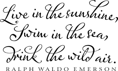 Live In The Sunshine Emerson Beautiful Wall Decals