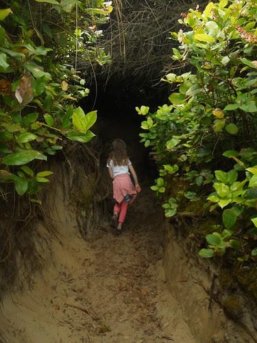 hobbit trails 104