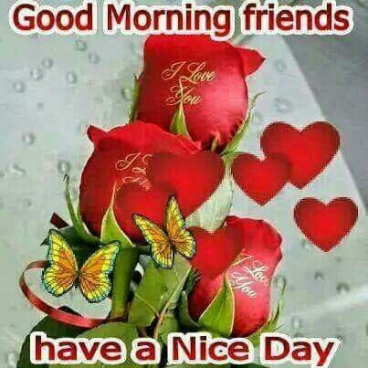 Good Morning Friends Have A Nice Day Pictures Photos And Images