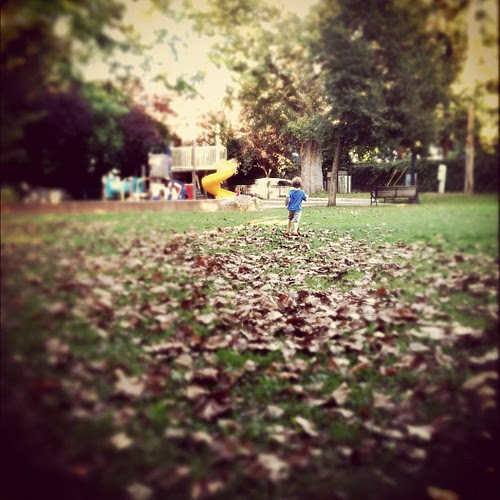One more of D running through the leaves...