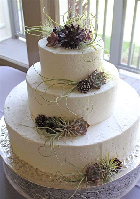 Succulent wedding cake   a hundred succulent cakes