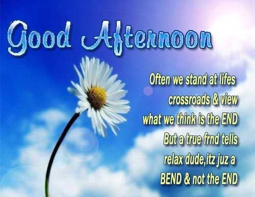 Good Afternoon Images Pics Good Afternoon Wishes Quotes Msg