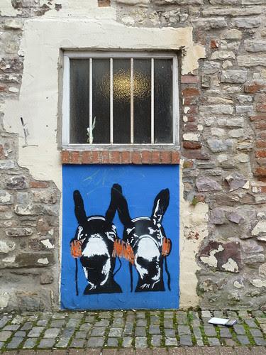 donkeys like music too