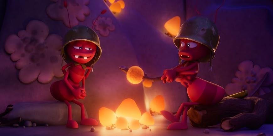 Maya the Bee: The Golden Orb (2021) 720p Movie English Full Stream Online