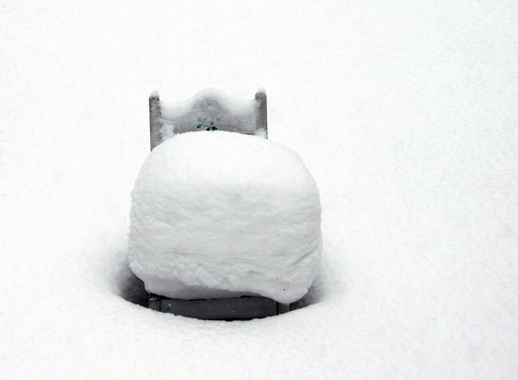 The Winter Chair
