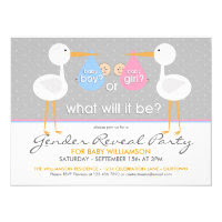 Stork Bundle Gender Reveal Party Invitation