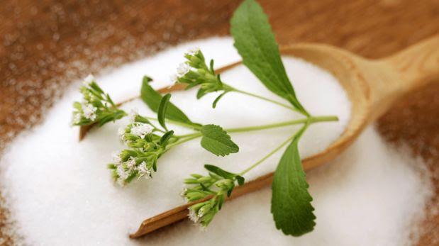 Descubre los mitos y verdades de la Stevia