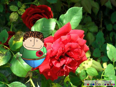 ele adora aquela rosa   he loves that rose