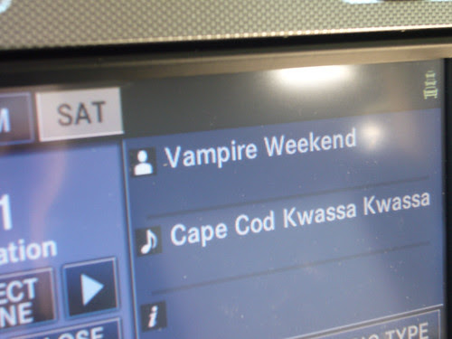 vampire cape cod