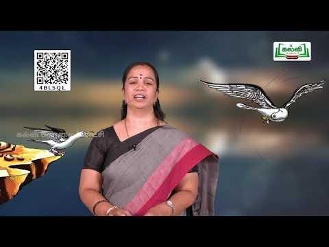 10th English His First Flight Prose Q&A  Part Eng Medium Kalvi TV