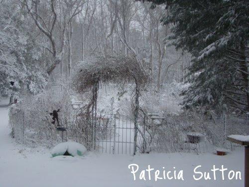 Garden in winter w-sig