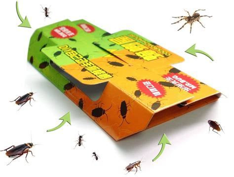 How To Get Rid Of Ants And Roaches Naturally ? Howsto.Co