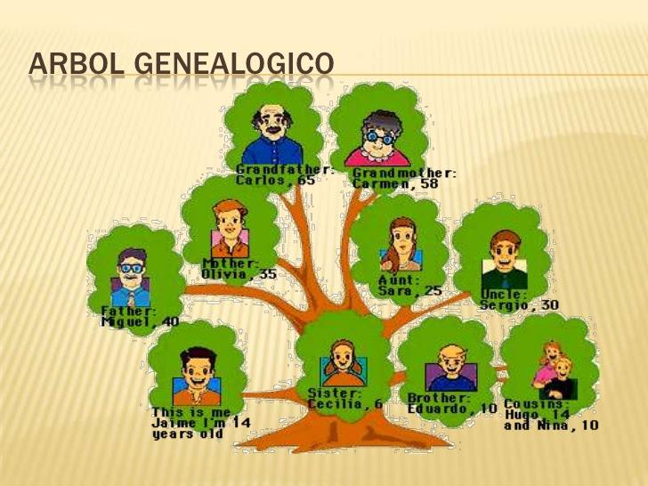 Arbol Genealogico En Ingles Laraexpolicenciaslatamco