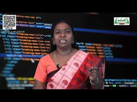 11th Computer applications ஜாவஸ்கிரிப்ட் - ல் உள்ளகட்டுப்பாட்டு கட்டமைப்பு பாடம் 14 பகுதி 1 Kalvi TV
