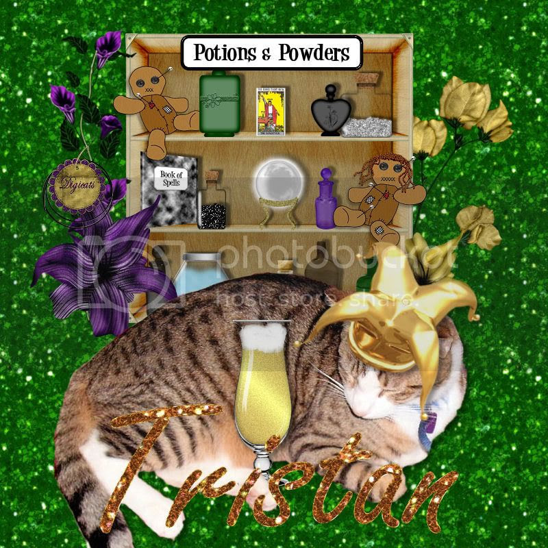 Tabby Cat,Mardi Gras
