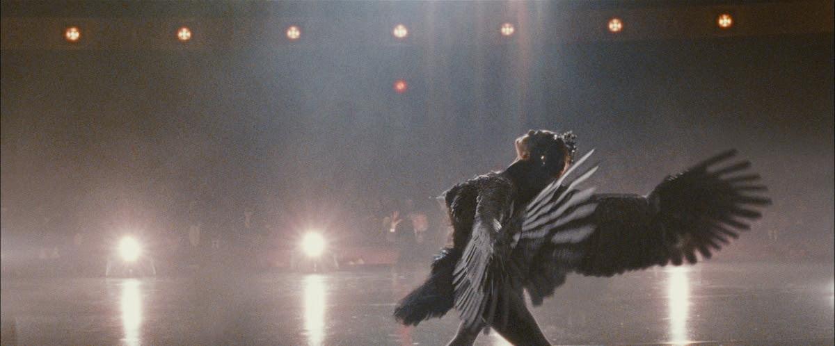 Risultati immagini per il cigno nero film