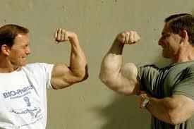 عضلة البايسيبس