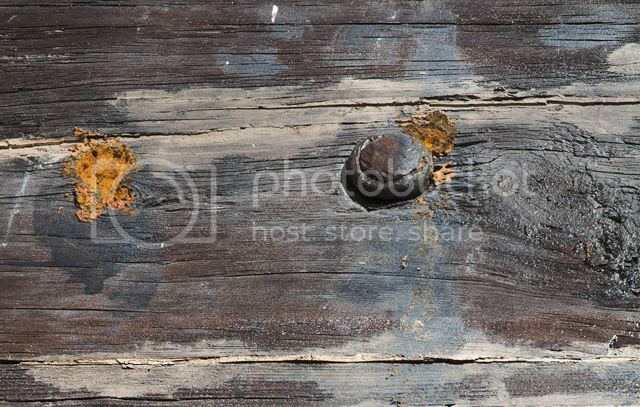 Rusty Nail on Wooden Surface [enlarge]