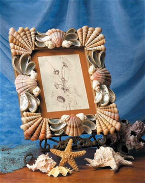 """Seashell Sensations"" Book by Nancy Flodine   Craft Books"