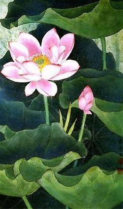 lotus_4