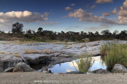 Kruger National Park by Megan Lorenz