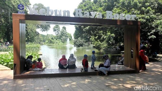 Berapa Sih Harga Tiket Masuk Kebun Raya Bogor?