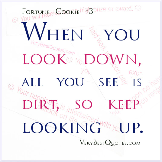 When You Look Down All You See Is Dirt So Keep Looking Up