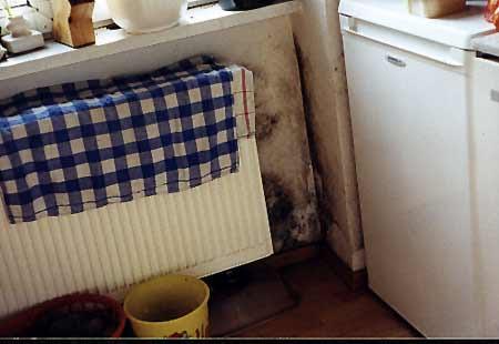 gesund leben und wohnen schimmelpilze in europ ischen wohnungen beispiele und checkliste. Black Bedroom Furniture Sets. Home Design Ideas