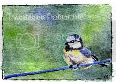 Bird on a Wire ACEO