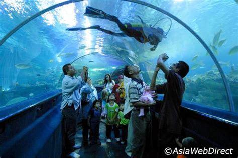 Aquaria KLCC in Kuala Lumpur   Kuala Lumpur Aquarium